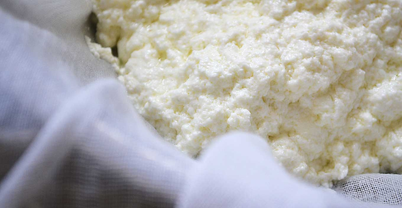 how to make ricotta | rusticplate.com