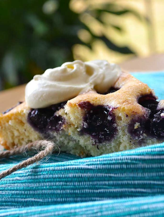 fields of blueberries cake